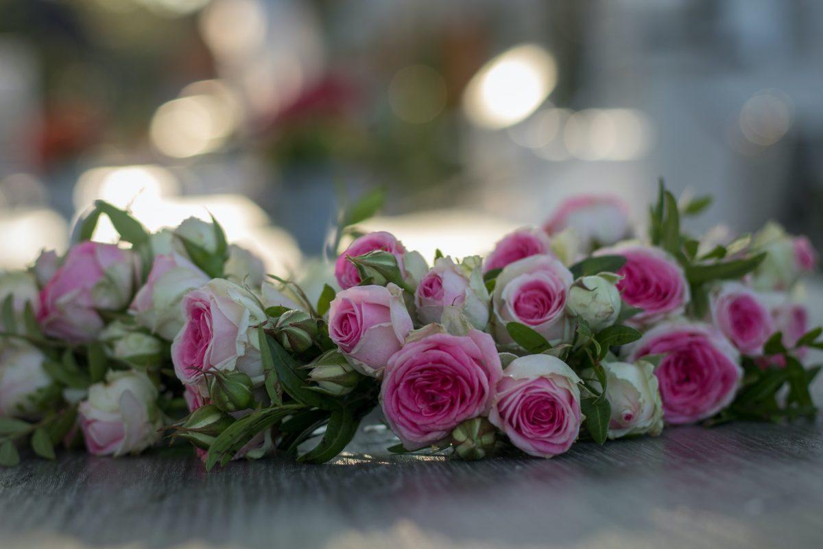 Hochzeit am Tegeler See
